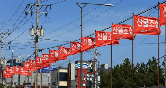 산불 조심 깃발. 연합뉴스
