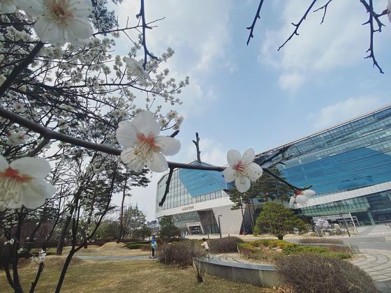성남시의회. 사진 성남시의회 페이스북