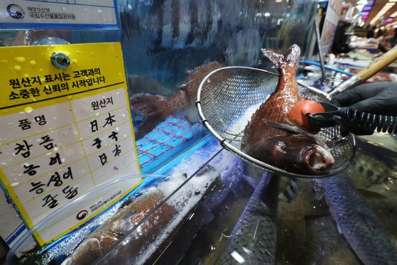 일본 정부가 후쿠시마 원자력발전소 오염수의 해양 방출 결정을 내린 13일 서울 동작구 노량진 수산시장에서 관계자가 일본산 참돔을 대상으로 방사능 측정을 하고 있다. 뉴스1