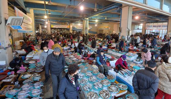 지난 1월 17일 경북 포항시 죽도어시장이 제철을 맞은 대게와 꽁치 과메기 등 싱싱한 수산물을 구입하기 위해 찾아온 관광객들로 북새통을 이루고 있다. 뉴스1