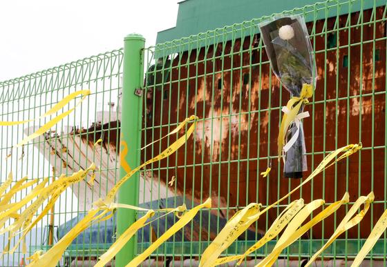 15일 전남 목포신항에 거치된 세월호 선체 앞 울타리에 추모객들이 남긴 노란 리본과 국화꽃이 묶여 있다. 프리랜서 장정필