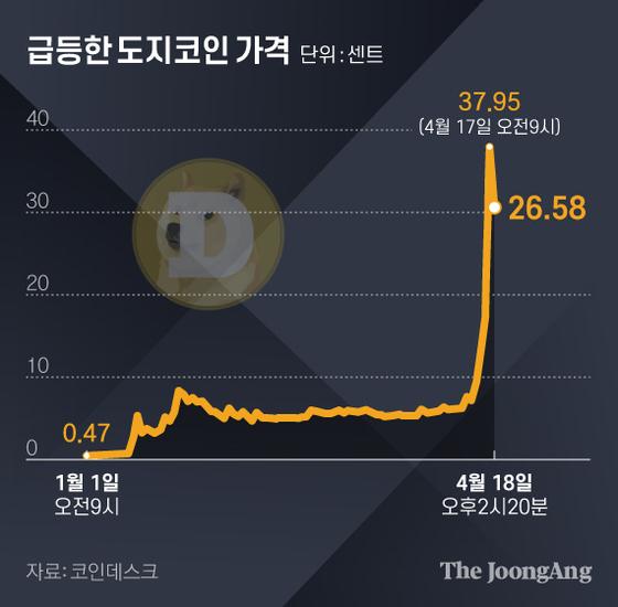 급등한 도지코인 가격. 그래픽=김현서 kim.hyeonseo12@joongang.co.kr