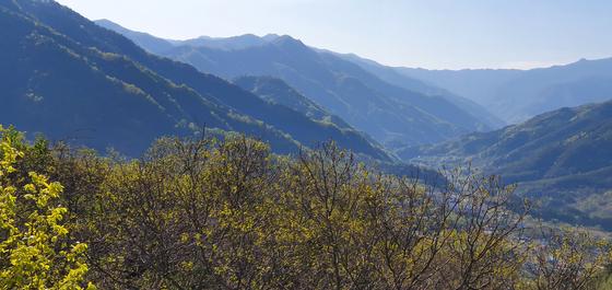 경남 산청군 중산리 부근 지리산 풍경. 지리산은 이념 충돌로 무수한 피를 흘렸다. 장세정 기자