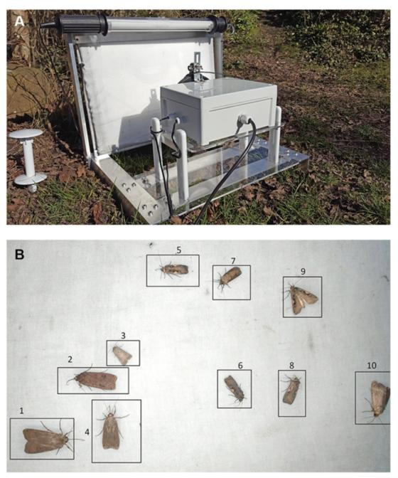 그림 1. 밤에 불을 밝혀 나방과 같이 밤에 몰려드는 생물체를 촬영하는 기기. 이 기기를 활용해 유리 판에 앉은 밤 곤충을 촬영했고, 각 개체의 생김새와 활동을 컴퓨터 비전 기술과 딥러닝을 활용해 분석한다. Høye et al. (2021)