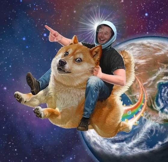 도지코인의 시바견과 일론 머스크 테슬라 CEO를 합성한 그림. [도지코인 트위터 캡처]
