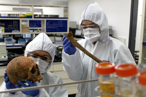 최근 대전 국립문화재연구소 안에 개관한 문화재분석정보센터는 문화재 분석의 전 과정을 원스톱 관리하게 된다. 고DNA분석실에서 연구원들이 인골 조사를 하는 모습. [사진 국립문화재연구소]