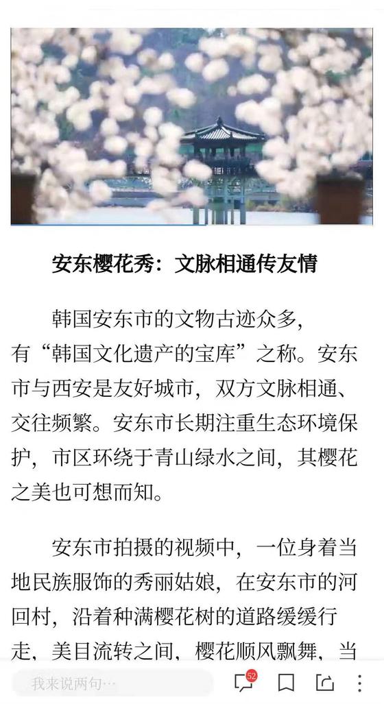 중국에서 인기를 끌고 있는 안동발 벚꽃 영상. 신화통신 SNS캡쳐. [사진 경북 안동시]