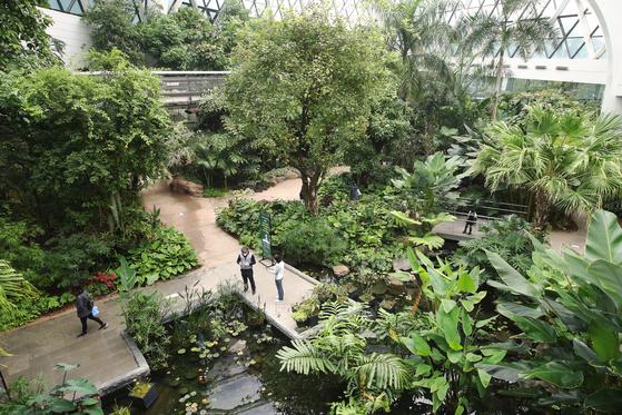 서울시 강서구 마곡동 서울식물원 온실. 지난 16일 서울식물원을 찾은 시민들이 온실과 공원을 둘러보고 있다. 장진영 기자