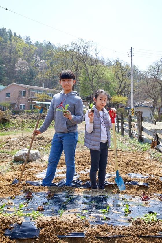 송현근(왼쪽)·전지윤 학생기자가 경기도 양평에 있는 질울 고래실 마을에서 반나절 동안 텃밭을 가꾸며 일일 농부가 됐다.