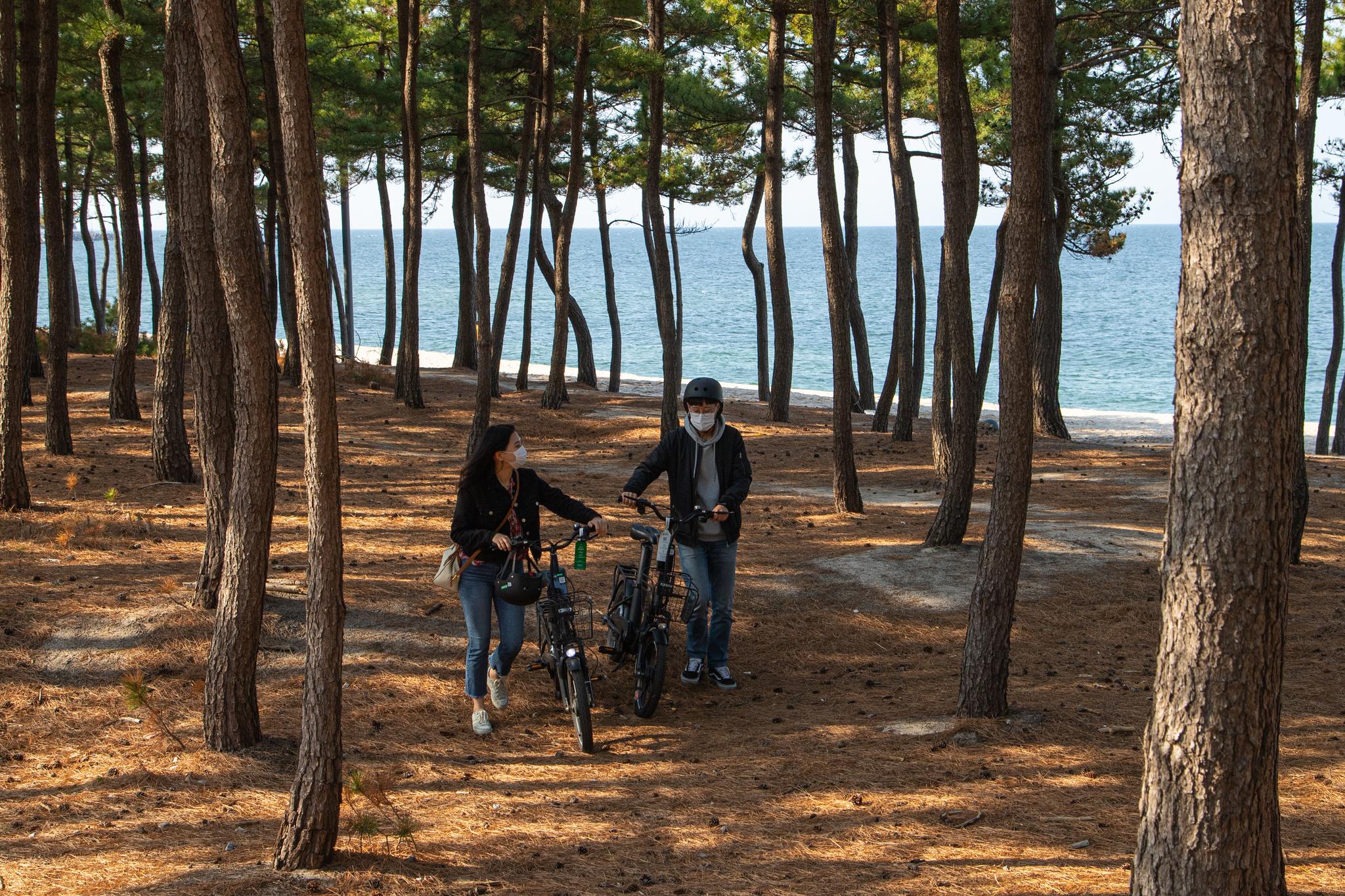 강릉 해변에서는 어디를 가나 바다 향기와 솔향이 넘실댄다. 5월 1일부터 강릉시 공공자전거를 타고 시내와 해변을 누빌 수 있다.