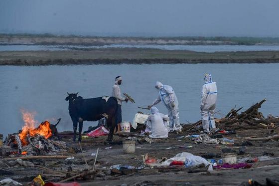 지난 5일 인도 갠지스 강가에서 현지 인력이 화장을 준비하고 있다. [AFP=연합뉴스]