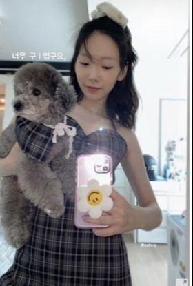 '소녀시대' 태연이 반려견과 함께 체크무늬 옷으로 맞춘 '개플룩'을 선보였다. [사진 태연 인스타그램]