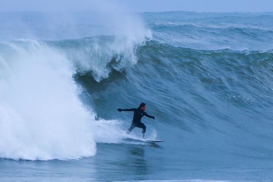 서핑성지로 불리는 강원 양양군의 한 해변에서 서퍼가 파도에 몸을 맡긴 채 서핑을 즐기고 있다. [사진 양양군]