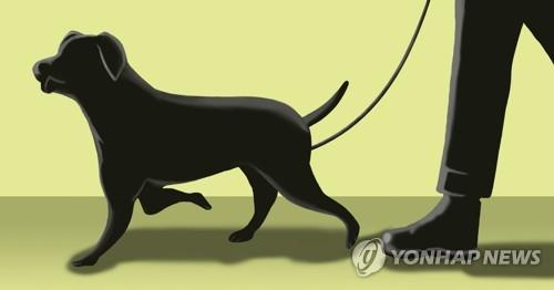 강아지 일러스트 . 연합뉴스