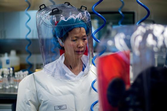 중국 우한 바이러스 연구소를 이끄는 시 젱리 박사는 지난해 3월 코로나19 바이러스가 실험실에 있던 박쥐 코로나바이러스와는 다르다고 주장했다. [AFP=연합뉴스]
