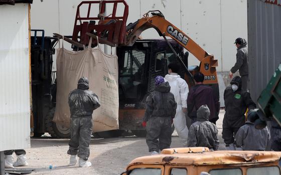 지난 3월 전남 나주시 봉황면에 있는 산란계 농장에서 고병원성 조류인플루엔자(AI)가 발생해 닭을 살처분하는 모습. 연합뉴스