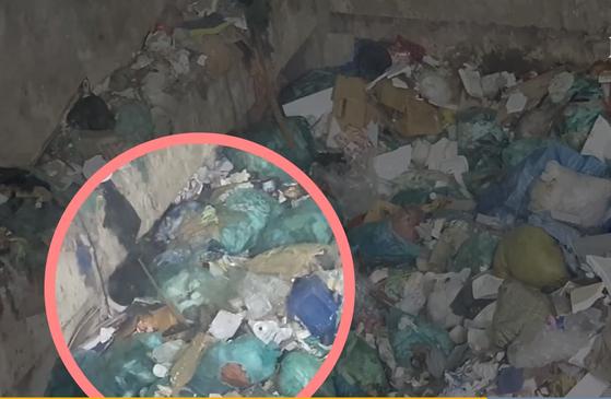 지난달 21일 오후 경북 의성의 쓰레기 소각장에 쌓인 생활폐기물 사이를 돌아다니는 쥐들. 강주안 기자