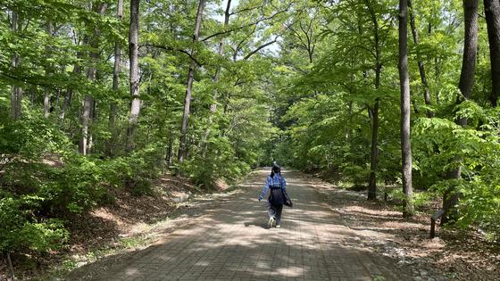 국립수목원에는 산책하기 좋은 길이 다수 있다. 박시은 학생기자는 '소소한 행복 길'을 걸어 전나무 숲으로 향했다.
