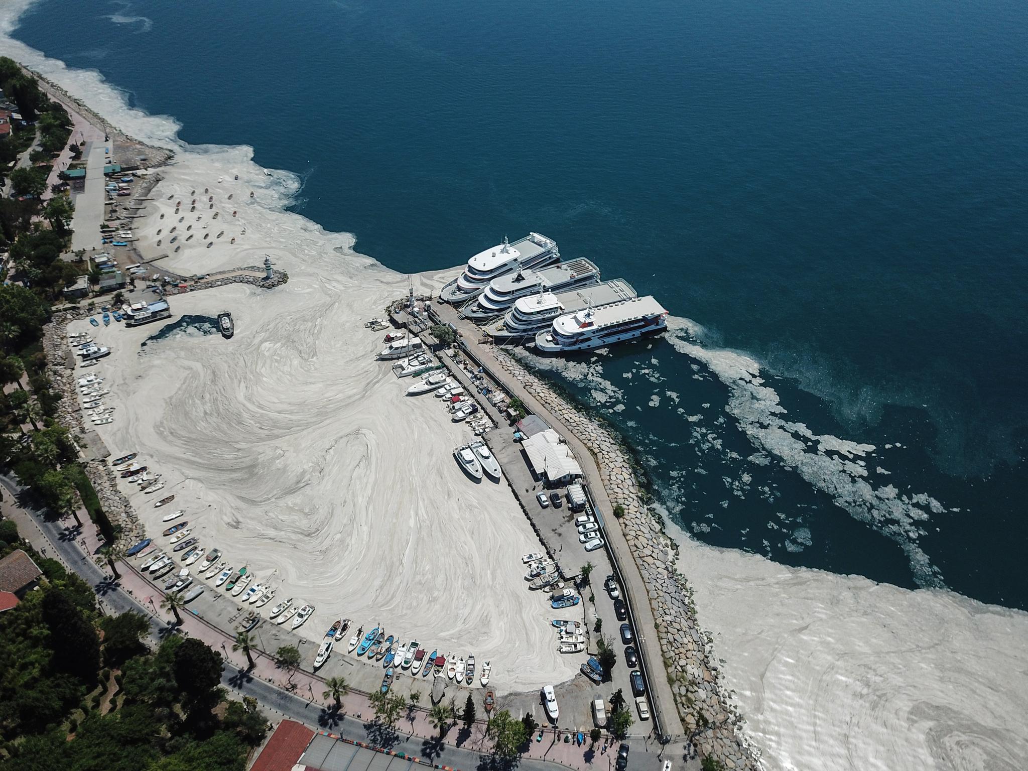 '바다의 콧물'이라고 불리는 해양점액이 6일 터키 이스탄불 마르마라해의 한 항구 주변을 하얗게 덮고 있다. 해양점액은 터키 최대도시 이스탄불에서 발생하기 시작해 마르마라 해안을 따라 다른 지역과 에게해 북부로까지 번지고 있다. 이 물질은 마르마라 해의 상당부분을 뒤덮고 있어 환경과 해양생물에 심각한 위협이 되고 있으며 터키 정부는 제거작업을 위한 부서를 발족했다. 신화=연합뉴스