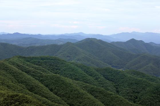 칠갑산 등산로 9개 중 하나인 칠갑산 산장로에서 바라본 칠갑산 주변 산세. 연합뉴스