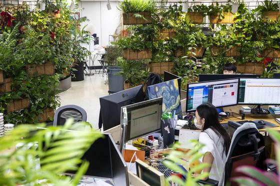 서울 강남에 있는 큐비트시큐리티 사무실에서 직원들이 모니터를 살펴보고 있다. 장진영 기자