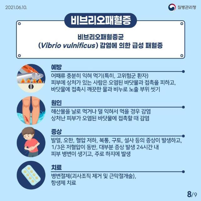비브리오패혈증 관련 정보. 사진 질병관리청