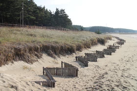 2014년 태안해안국립공원 삼봉 해안사구에 모래포집기를 설치한 지 2년 만에 모래포집기 위로 모래가 쌓이고 있다. 국립공원공단