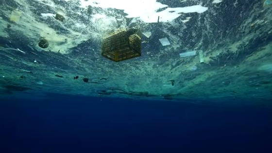 다큐멘터리 '플라스틱 바다'의 한 장면. 사진 유튜브 캡처