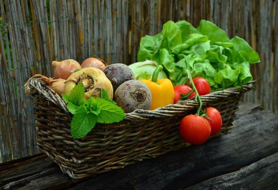 채소를 신선하게 유지하기 위해서는 채소의 성질에 따라 보관방법을 달리하는 것이 좋다. [사진 픽사베이]