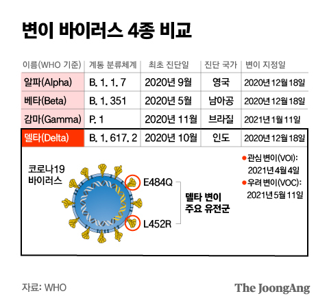 변이 바이러스 4종 비교. 그래픽=박경민 기자 minn@joongang.co.kr