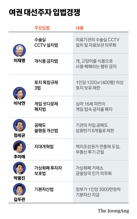 여권 대선주자 입법경쟁. 그래픽=김현서 kim.hyeonseo12@joongang.co.kr
