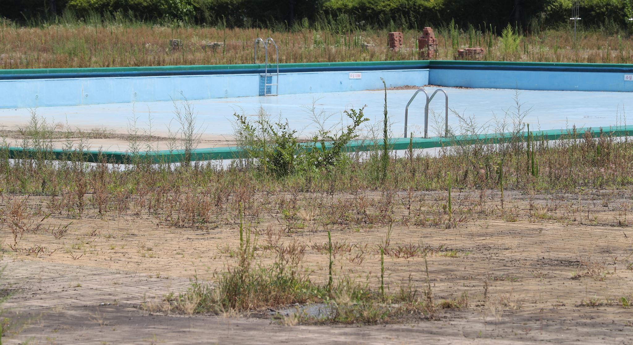 [이 시각]무더위에도 잡초만 무성한 한강 수영장, 아이들 웃음소린 어디에...