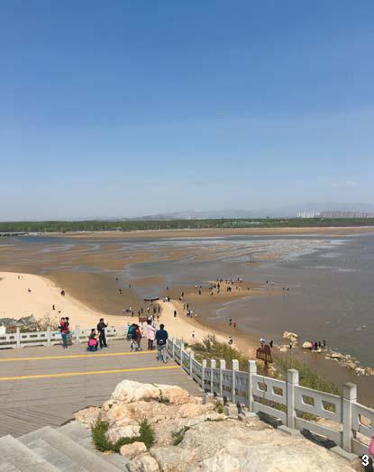 3 중국이 손꼽는 여름 휴양지 '북대하' 풍경. 7000여 종의 조류가 몰려드는 습지와 바다 풍광이 한 폭의 그림을 이룬다.
