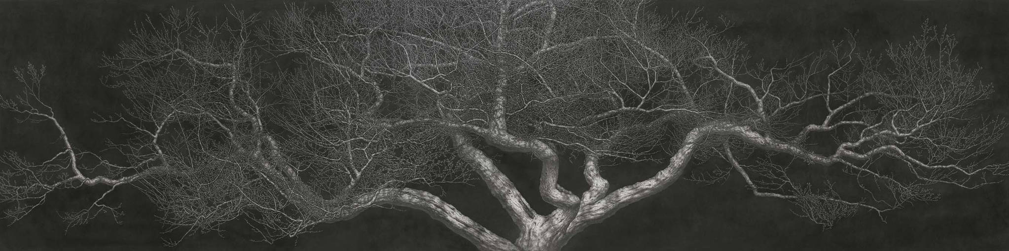 Moonscape 달빛(2017), 227x910cm, Charcoal on Canvas