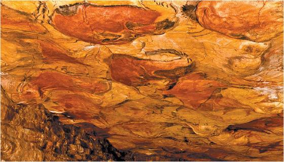 인류 최초의 집은 동굴이다. 가장 오래된 동굴주거 유적인 알타미라 동굴 안에는 비를 피하고 동물의 공격으로부터 보호를 받는 등 인간주거 조건의 모든 것이 들어 있다. 이런 동굴의 특징은 현대인의 주거 공간인 아파트(아래 사진)에서도 근본적으로 동일하게 나타난다. [중앙포토]