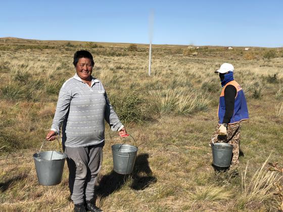 몽골 만달고비시 주민들이 고양의 숲의 나무에 물을 주고 있다. 천권필 기자.