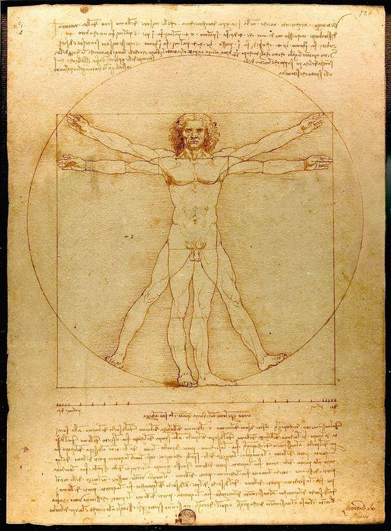 레오나르도 다빈치의 천재성은 치열한 관찰의 결과였다. 대표작인 드로잉 '비트루비우스 인간'. [사진 아르테]