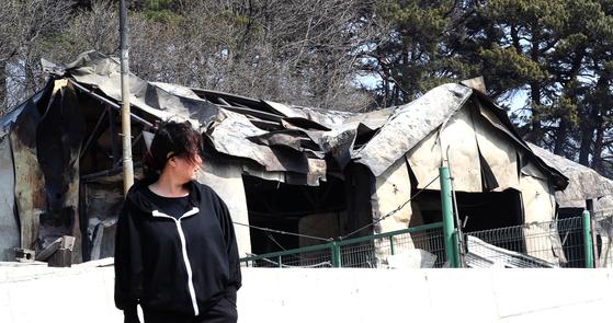 5일 강원도 속초시 장천마을의 한 주민이 불타버린 집을 바라보고 있다. 4일 오후 고성군 토성면 원암리에서 발생한 산불은 강한 바람을 타고 동쪽으로 번져 1시간 30여분 만에 약 7.2㎞ 떨어진 속초시 장사동 해안까지 이르렀다. [장진영 기자]
