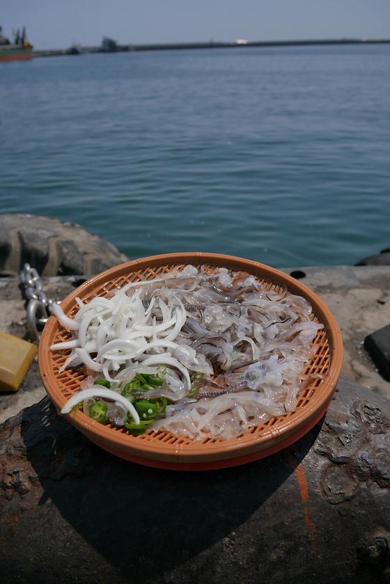 어린 오징어를 일일이 썰어 담아내는 속초 산 오징어회. 야들 야들하고 부드러운 맛이다. 속초 오징어는 지금이 제철이다. 5월부터 동해에서 잡은 오징어들이 속초항으로 모여든다.