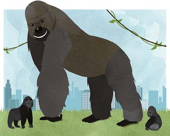 고릴라 삽화