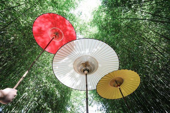 전라북도 무형문화재 45호 우산장인 윤규상 명장이 만든 지우산. 아시아권 지우산은 생김새가 비슷해 한국의 지우산은 일본 우산이라는 오해를 받기도 한다. [사진 비꽃]