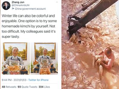 지난 1월 유엔 주재 중국 대사 장쥔(張軍)이 자신의 트위터 계정에 올린 김치 담그는 사진(왼쪽). 지난 3월 SNS에 뜬 '알몸 김치' 동영상.