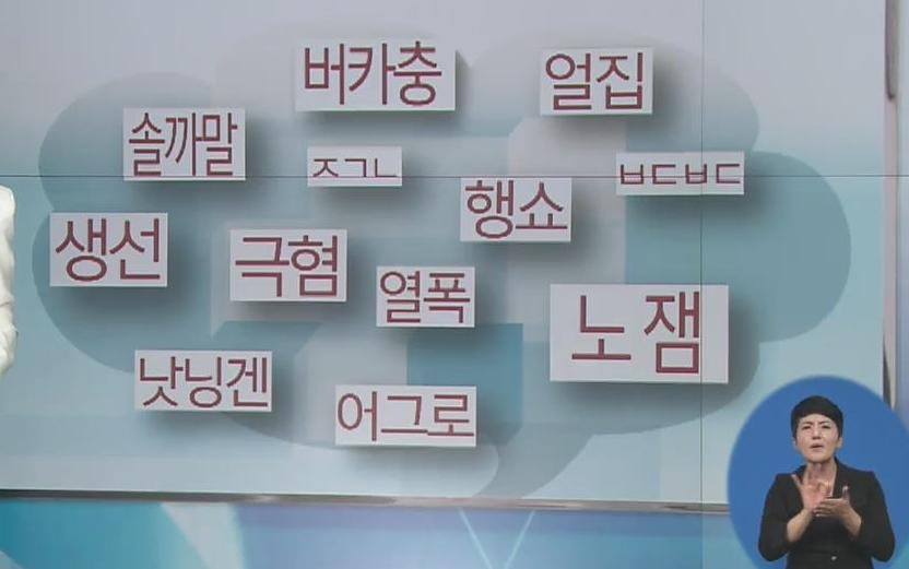 사진=KBS 방송 캡쳐