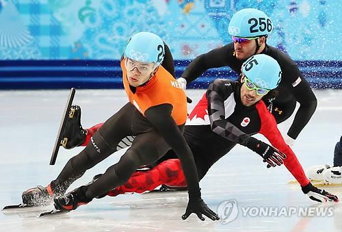 2014년 소치올림픽 쇼트트랙 종목에 출전한 알바레스(256번)