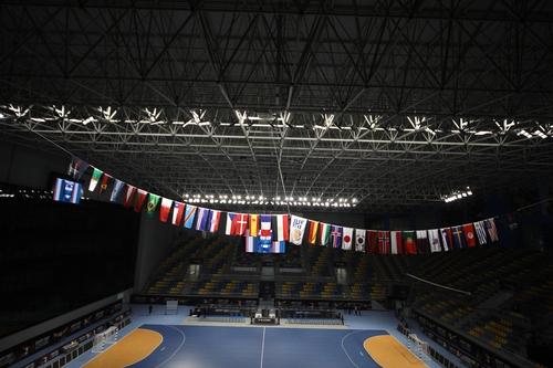 제27회 세계남자핸드볼선수권대회가 열리는 이집트 카이로 하산 무스타파 인도어 홀