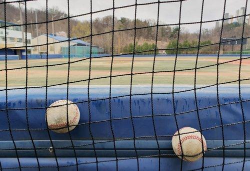 방치된 야구공
