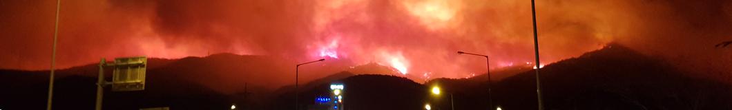 최악의 동해안 산불