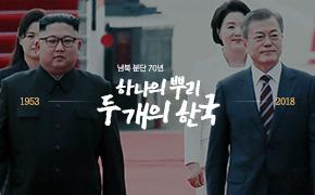 하나의 뿌리, 두개의 한국