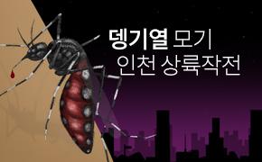 뎅기열 모기 인천 상륙작전